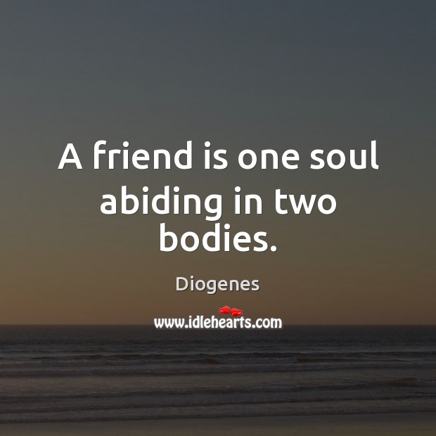A friend is one soul abiding in two bodies. Image