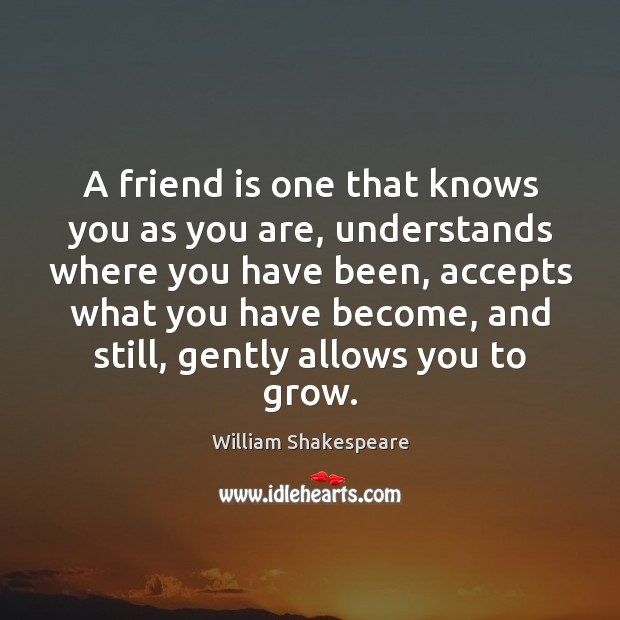 Image, A friend is one that knows you as you are, understands where