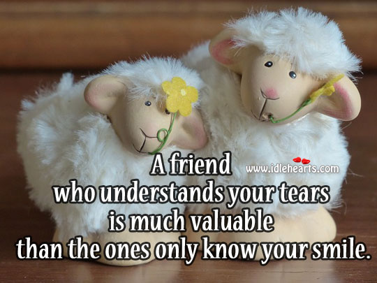 A Friend Who Understands Your Tears Is Much Valuable Than The Ones Only Know Your Smile.