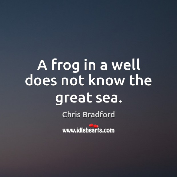 A frog in a well does not know the great sea. Chris Bradford Picture Quote