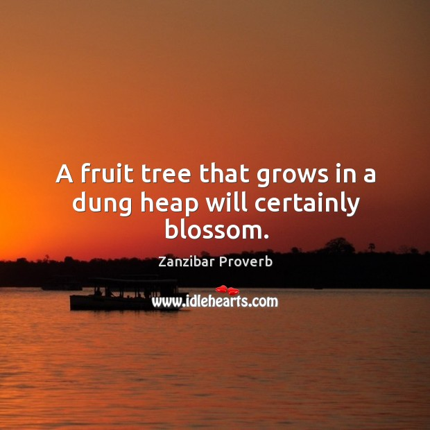 A fruit tree that grows in a dung heap will certainly blossom. Zanzibar Proverbs Image