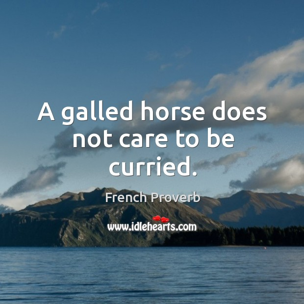 Image, A galled horse does not care to be curried.