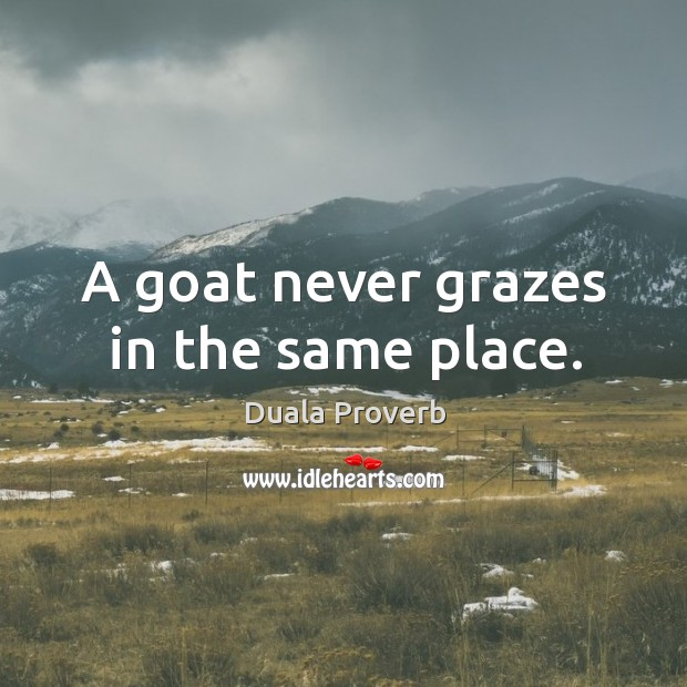 A goat never grazes in the same place. Duala Proverbs Image