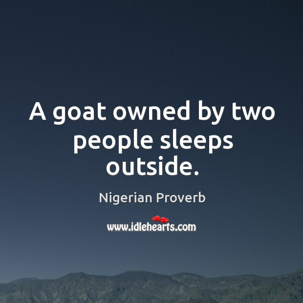 A goat owned by two people sleeps outside. Image
