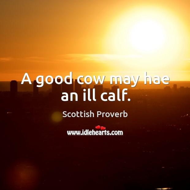 Image, A good cow may hae an ill calf.