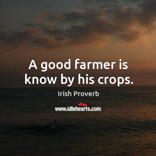 Image, A good farmer is know by his crops.