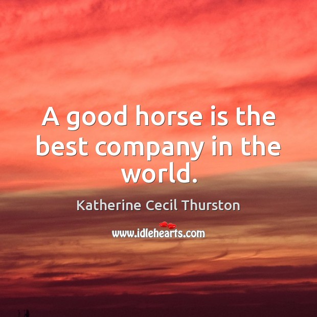 Image, A good horse is the best company in the world.