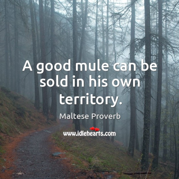 Image, A good mule can be sold in his own territory.