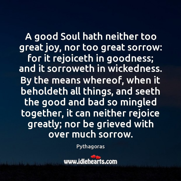 Image, A good Soul hath neither too great joy, nor too great sorrow: