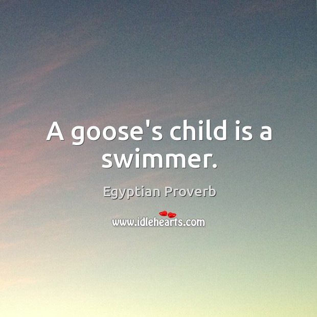 A goose's child is a swimmer. Egyptian Proverbs Image