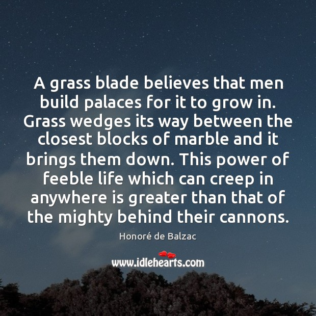 A grass blade believes that men build palaces for it to grow Image