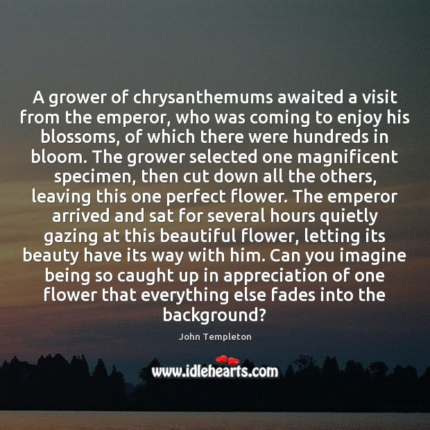 Image, A grower of chrysanthemums awaited a visit from the emperor, who was