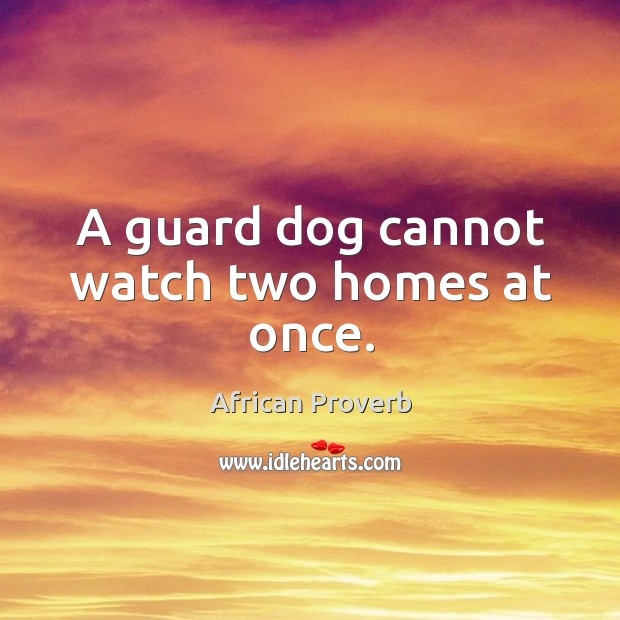 Image, A guard dog cannot watch two homes at once.