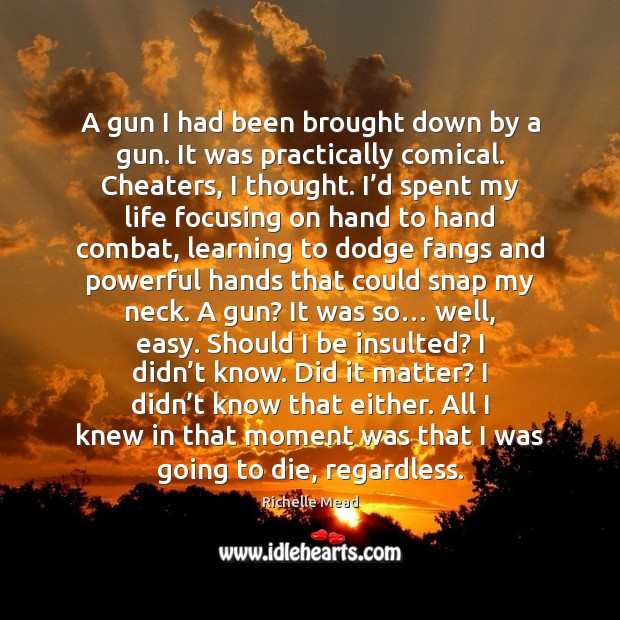 Image, A gun I had been brought down by a gun. It was