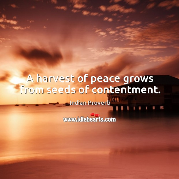 A harvest of peace grows from seeds of contentment. Image