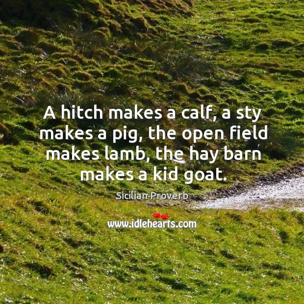 Image, A hitch makes a calf, a sty makes a pig