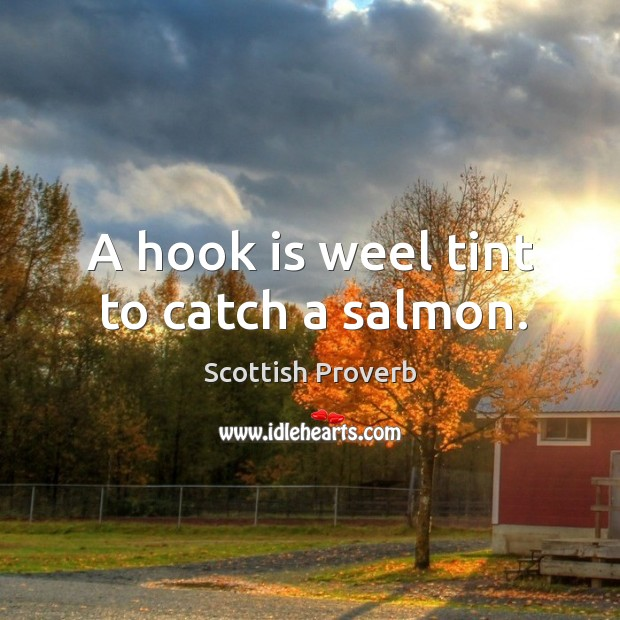 Image, A hook is weel tint to catch a salmon.
