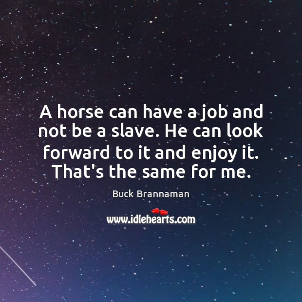 Image, A horse can have a job and not be a slave. He