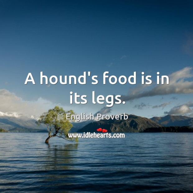 A hound's food is in its legs. Image