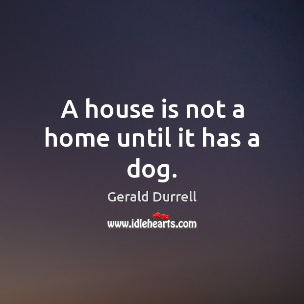 Image, A house is not a home until it has a dog.