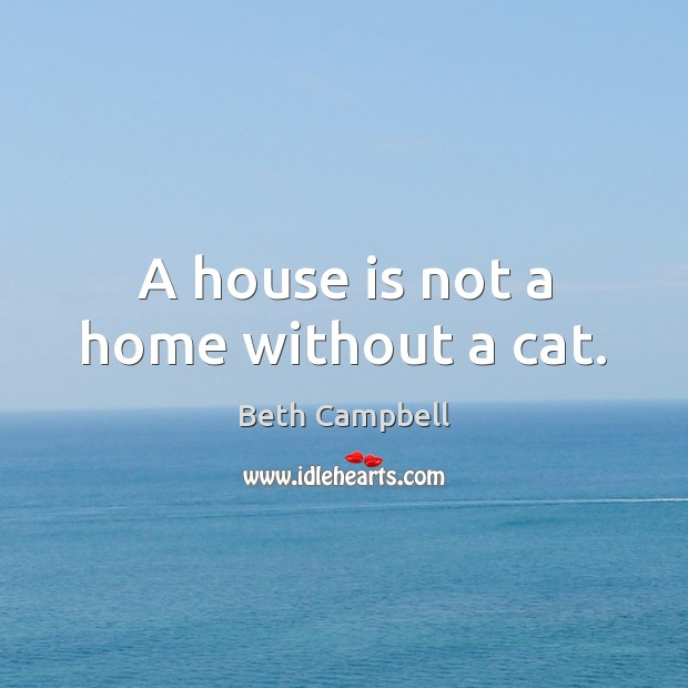 Image, A house is not a home without a cat.