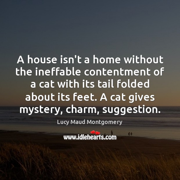 A house isn't a home without the ineffable contentment of a cat Image