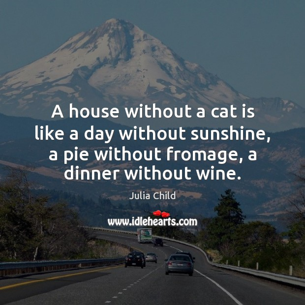 A house without a cat is like a day without sunshine, a Julia Child Picture Quote