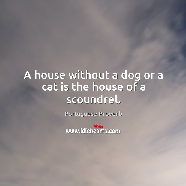 Image, A house without a dog or a cat is the house of a scoundrel.
