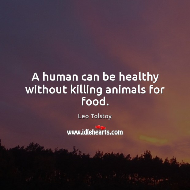 Image, A human can be healthy without killing animals for food.
