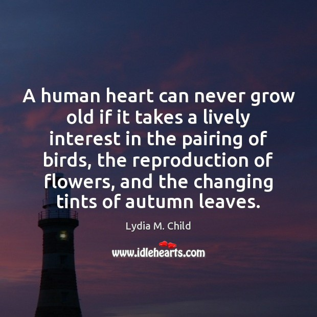 Image, A human heart can never grow old if it takes a lively