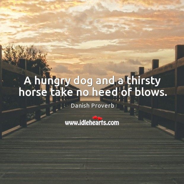 Image, A hungry dog and a thirsty horse take no heed of blows.
