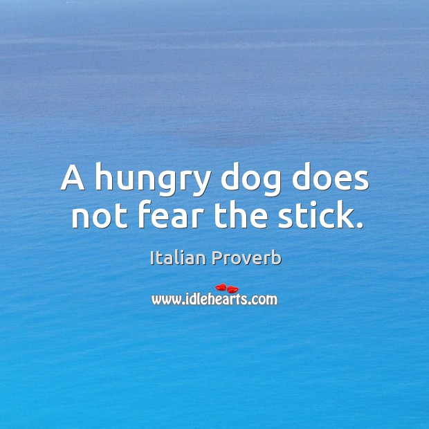 Image, A hungry dog does not fear the stick.