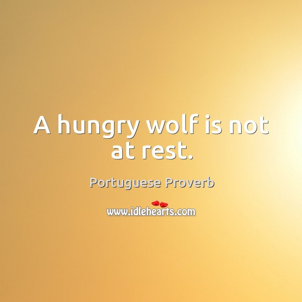 Image, A hungry wolf is not at rest.