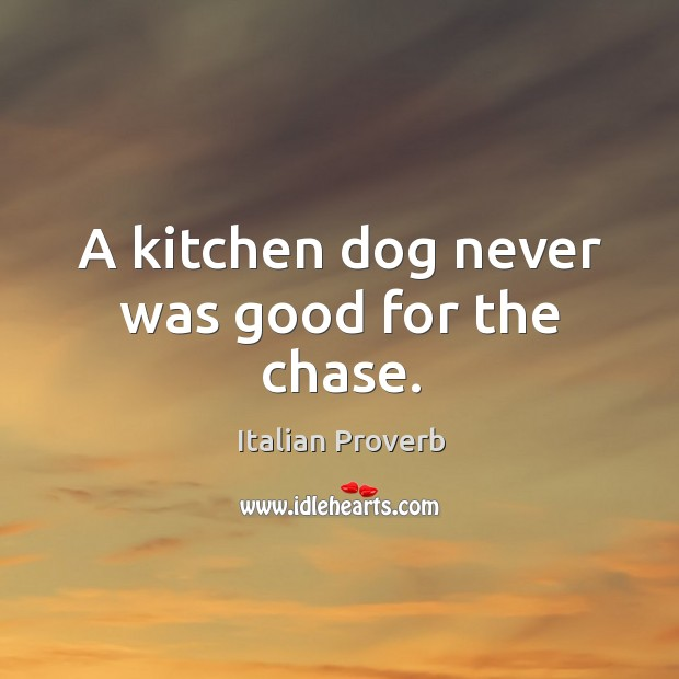 Image, A kitchen dog never was good for the chase.