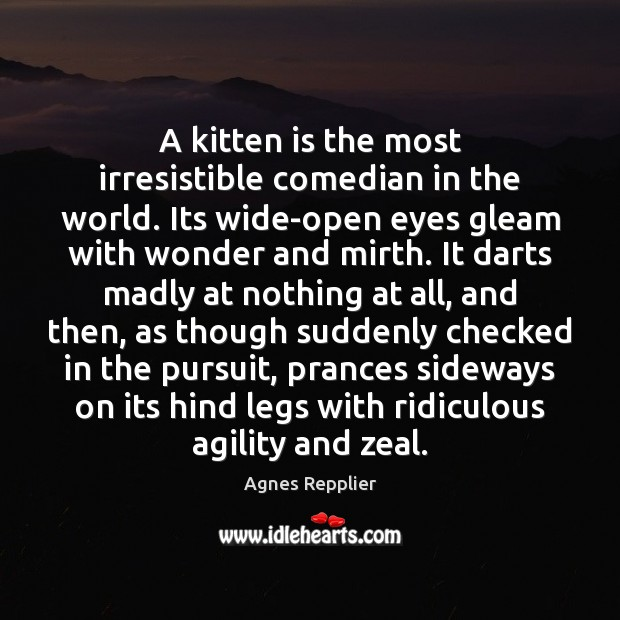 A kitten is the most irresistible comedian in the world. Its wide-open Agnes Repplier Picture Quote