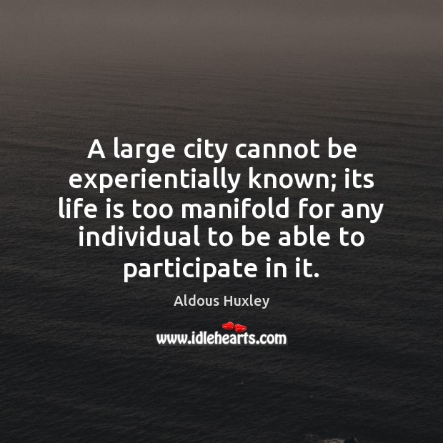 Image, A large city cannot be experientially known; its life is too manifold
