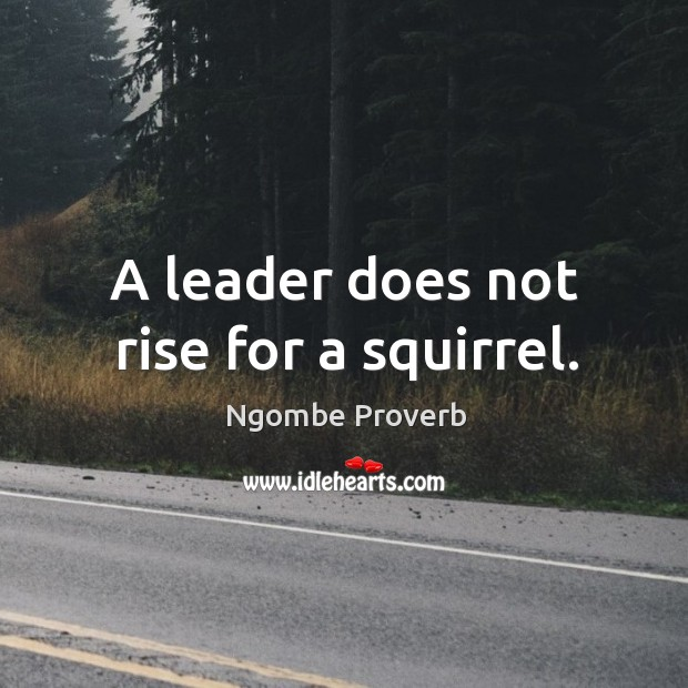 A leader does not rise for a squirrel. Ngombe Proverbs Image