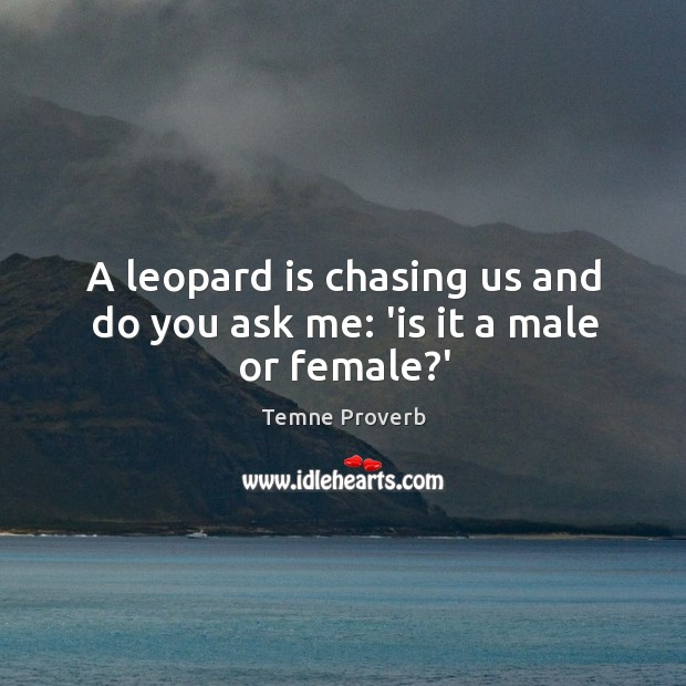 Image, A leopard is chasing us and do you ask me: 'is it a male or female?'