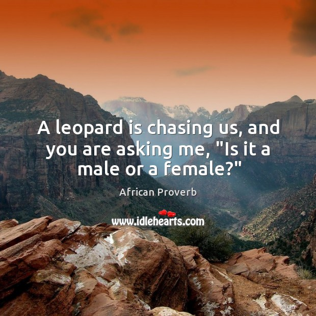 """Image, A leopard is chasing us, and you are asking me, """"is it a male or a female?"""""""