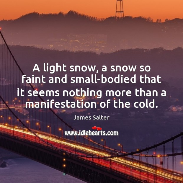 A light snow, a snow so faint and small-bodied that it seems James Salter Picture Quote