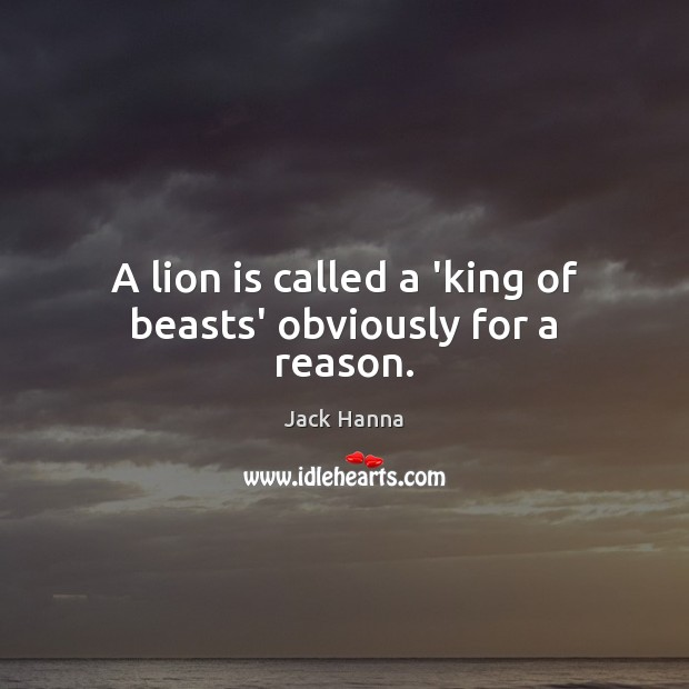 A lion is called a 'king of beasts' obviously for a reason. Image