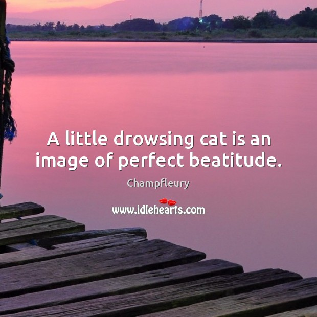 A little drowsing cat is an image of perfect beatitude. Image