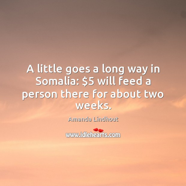 A little goes a long way in Somalia: $5 will feed a person there for about two weeks. Amanda Lindhout Picture Quote