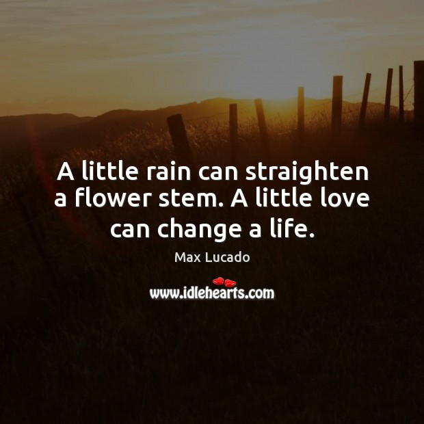 A little rain can straighten a flower stem. A little love can change a life. Max Lucado Picture Quote