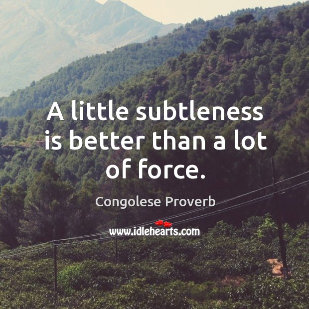 A little subtleness is better than a lot of force. Congolese Proverbs Image