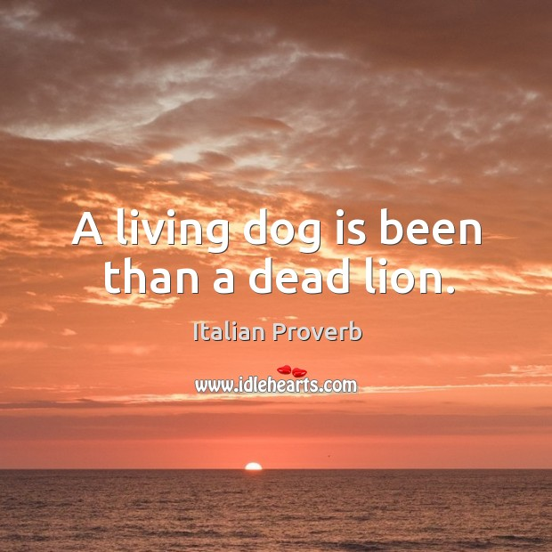 Image, A living dog is been than a dead lion.