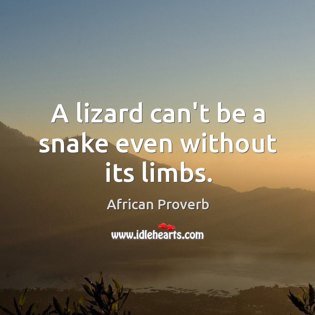 Image, A lizard can't be a snake even without its limbs.