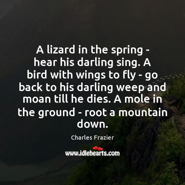 A lizard in the spring – hear his darling sing. A bird Charles Frazier Picture Quote
