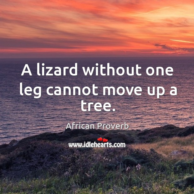 Image, A lizard without one leg cannot move up a tree.