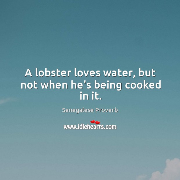 A lobster loves water, but not when he's being cooked in it. Senegalese Proverbs Image